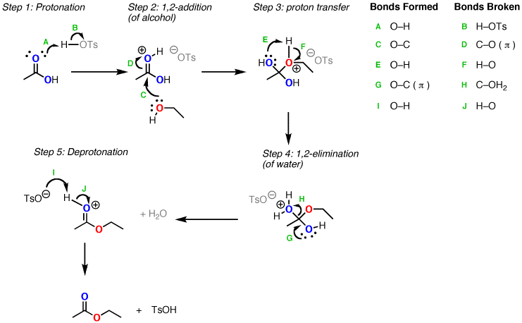 write a mechanism for the base-catalyzed hydrolysis of methyl salicylate