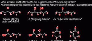 Weird Nomenclature In Carbonyl Chemistry