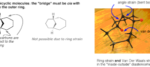 Bridged Bicyclic Rings (And How To Name Them)